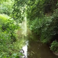 Gatwick Stream