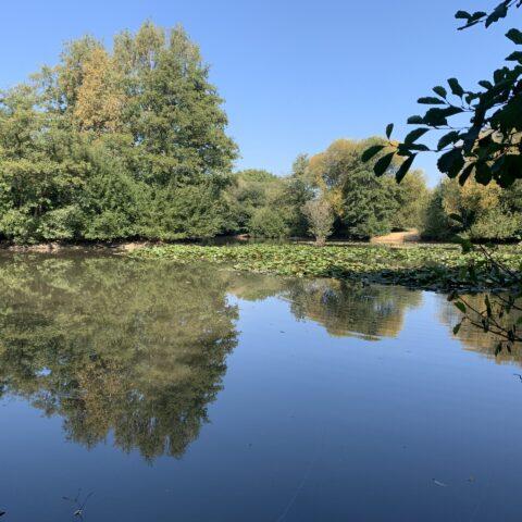 Riverside – Gatwick Lake