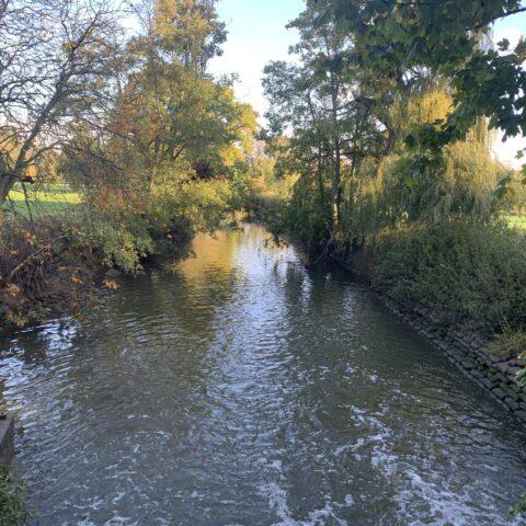 River Mole – Kinnersley Manor